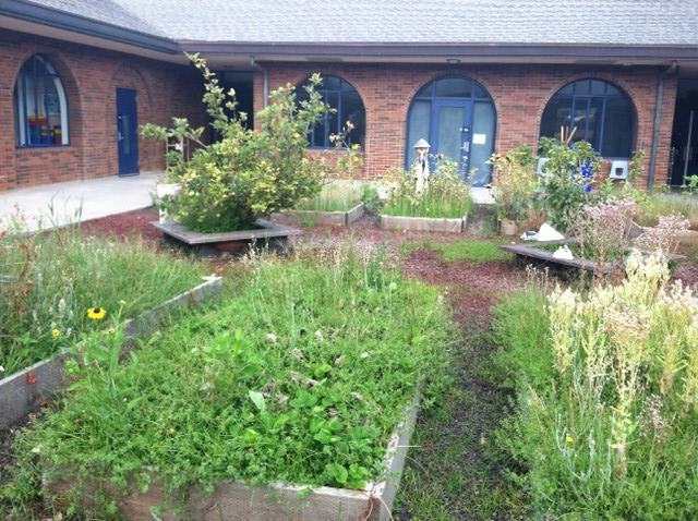 HELP! Village Elementary School Garden Needs Some TLC, ASAP ...