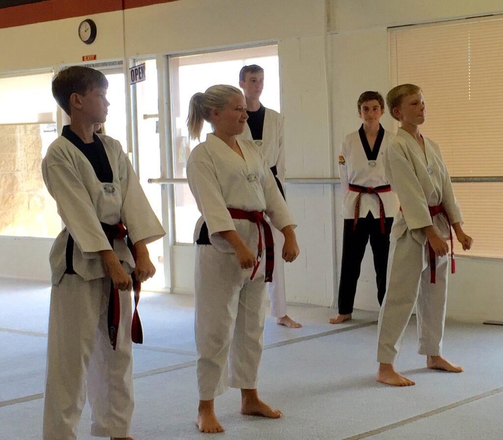 black belt essay outline