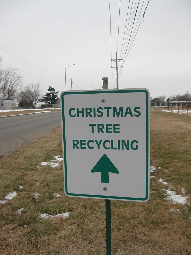 Cabinteely park christmas tree recycling san antonio
