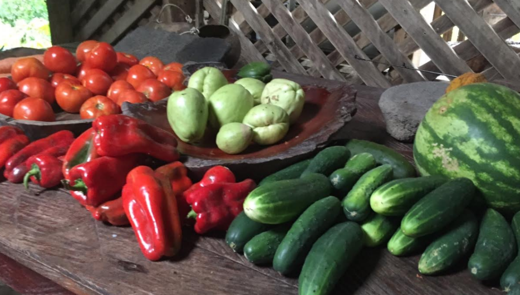 All of the produce we ate was grown at the farm surrounding the lodge.