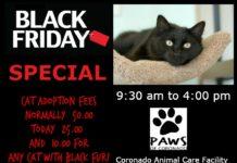 paws of coronado black friday cat adoption event