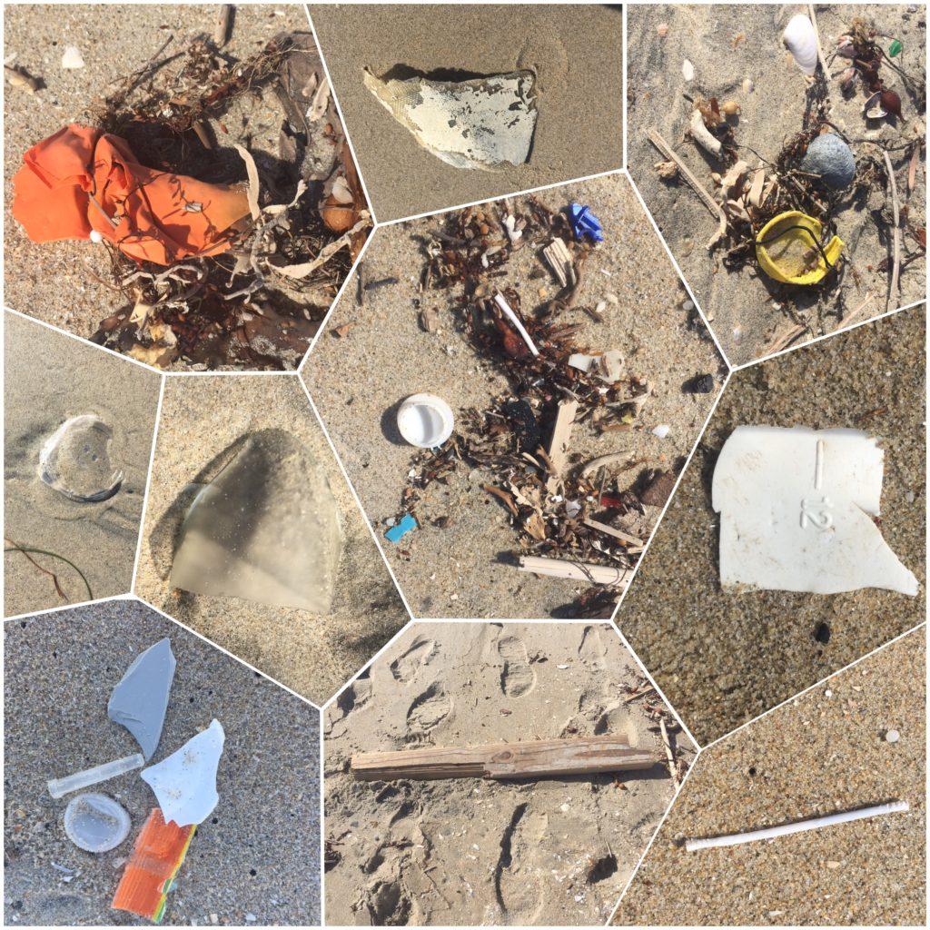 Gator Beach litter