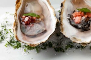 bluewater oysters on the half shell