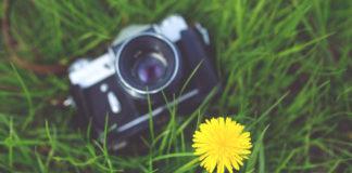 camera-flower