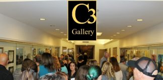 C3 gallery