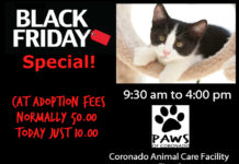paws of coronado black friday cat adoption event