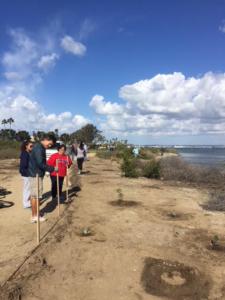 Grand Caribe Shoreline Park Volunteers Inspect Their Work
