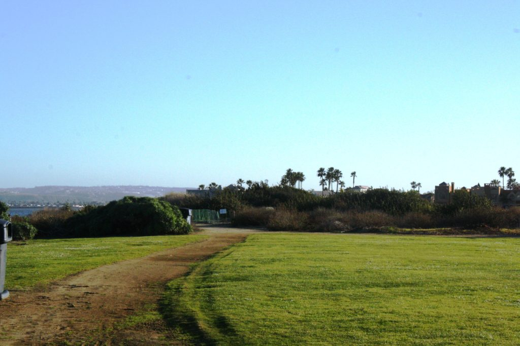 Grand Caribe Shoreline Park. View of Replanted Path and Fencing.