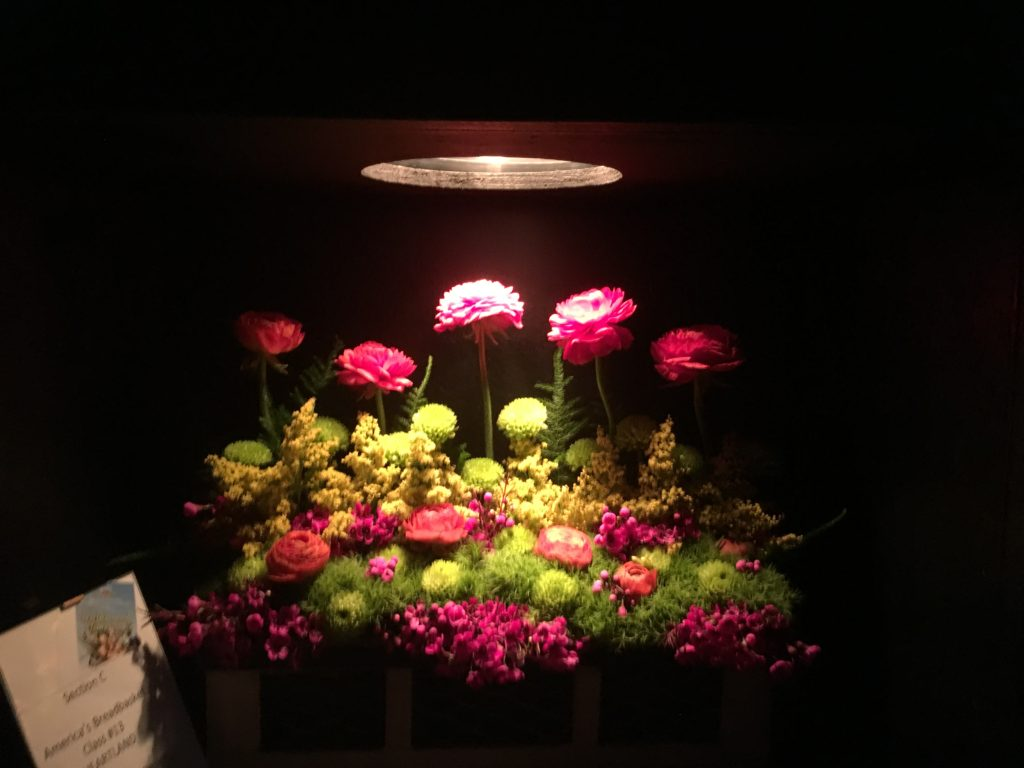 floral shadow box