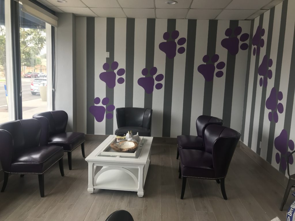 Purple Paws Pet Clinic