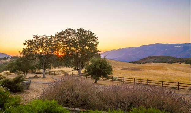C4 Ranch