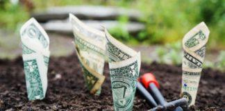 Pixabay money