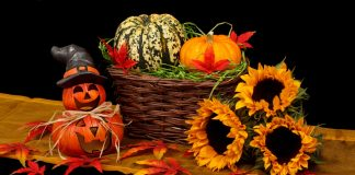 https://www.pexels.com/photo/holiday-dark-decoration-halloween-41200/