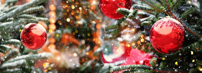 Coronado Christmas