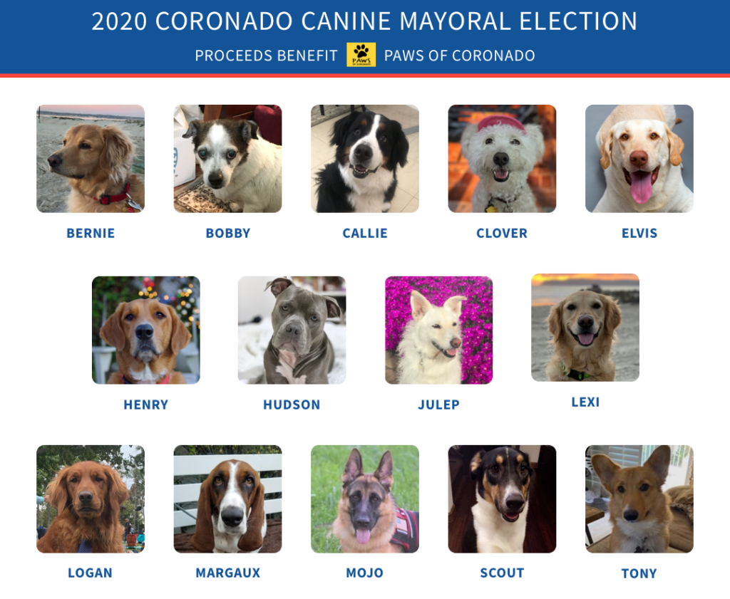 2020 PAWS Canine Mayor Banner Poster