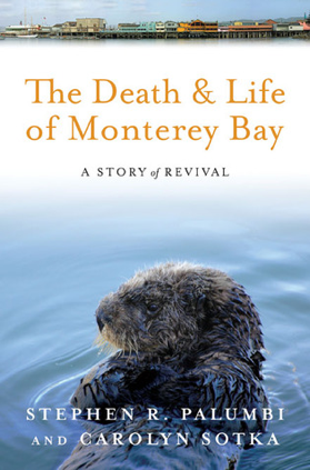 The Death & Life of Monterey Bay