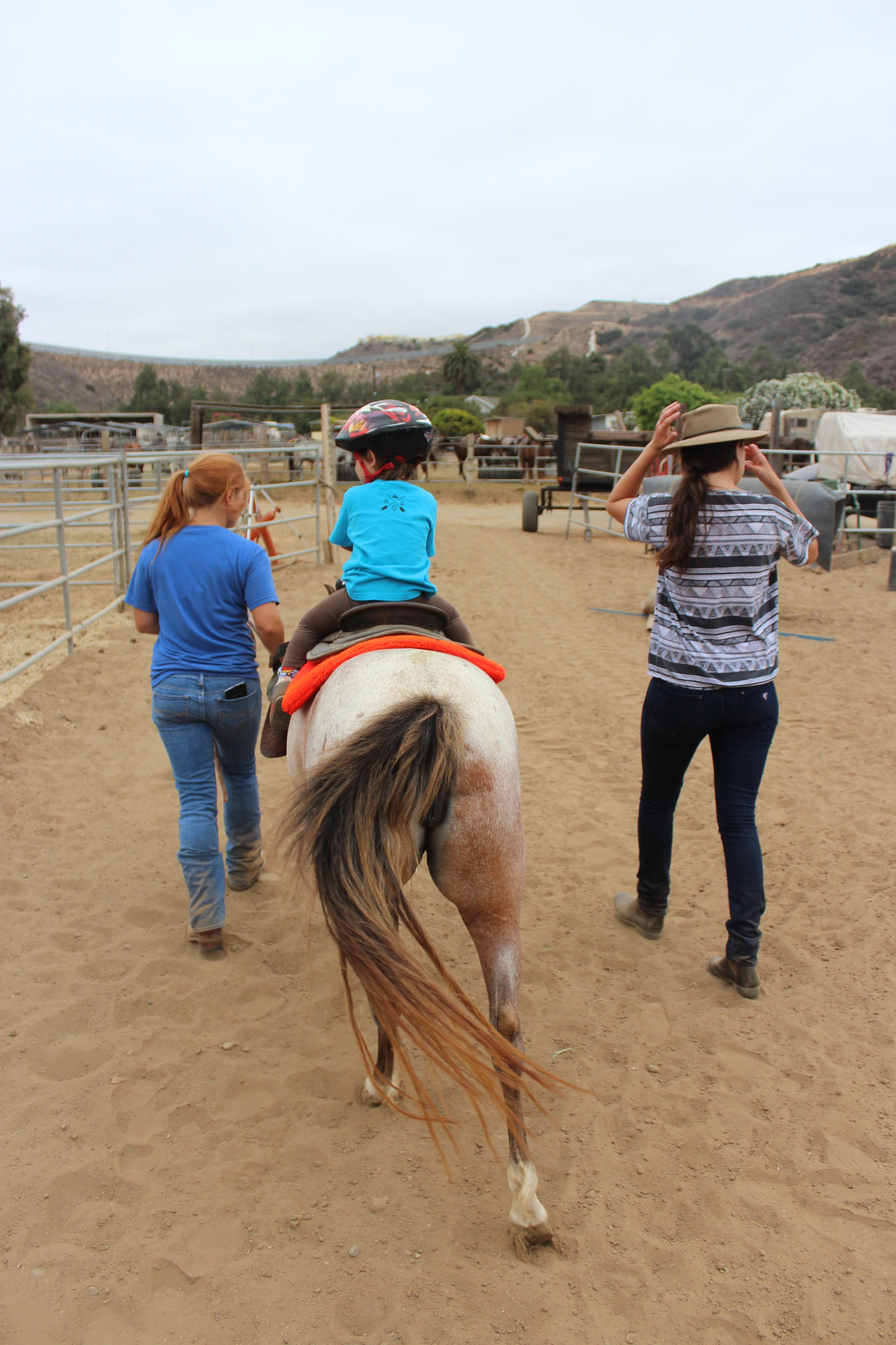San Diego Beach Rides Horse Rentals Wagon Rides