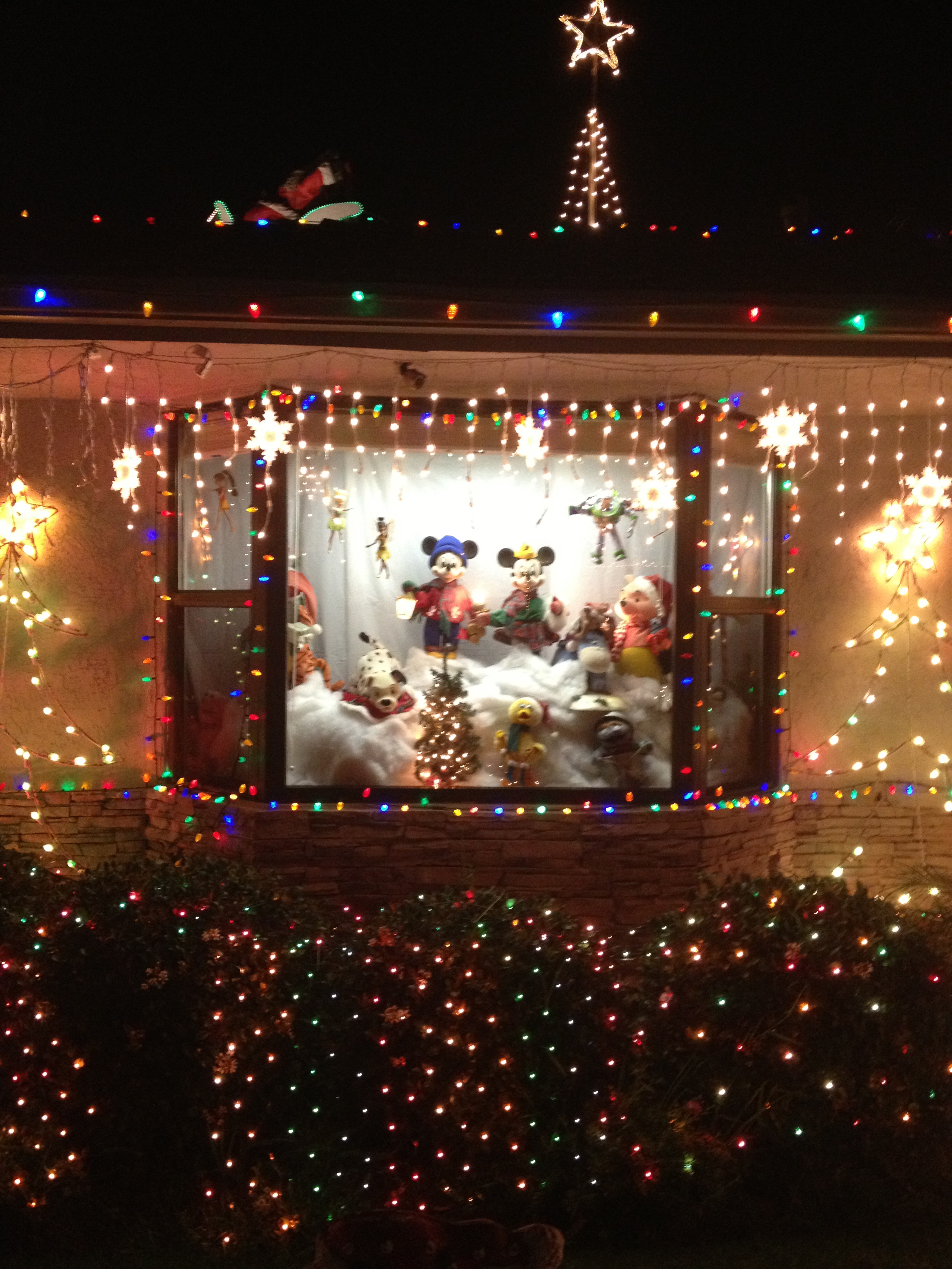 Bridgeworthy: Garrison Street Christmas Lights Display in Point Loma ...