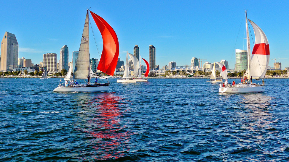 Red-and-White Sailboats in San Diego Bay